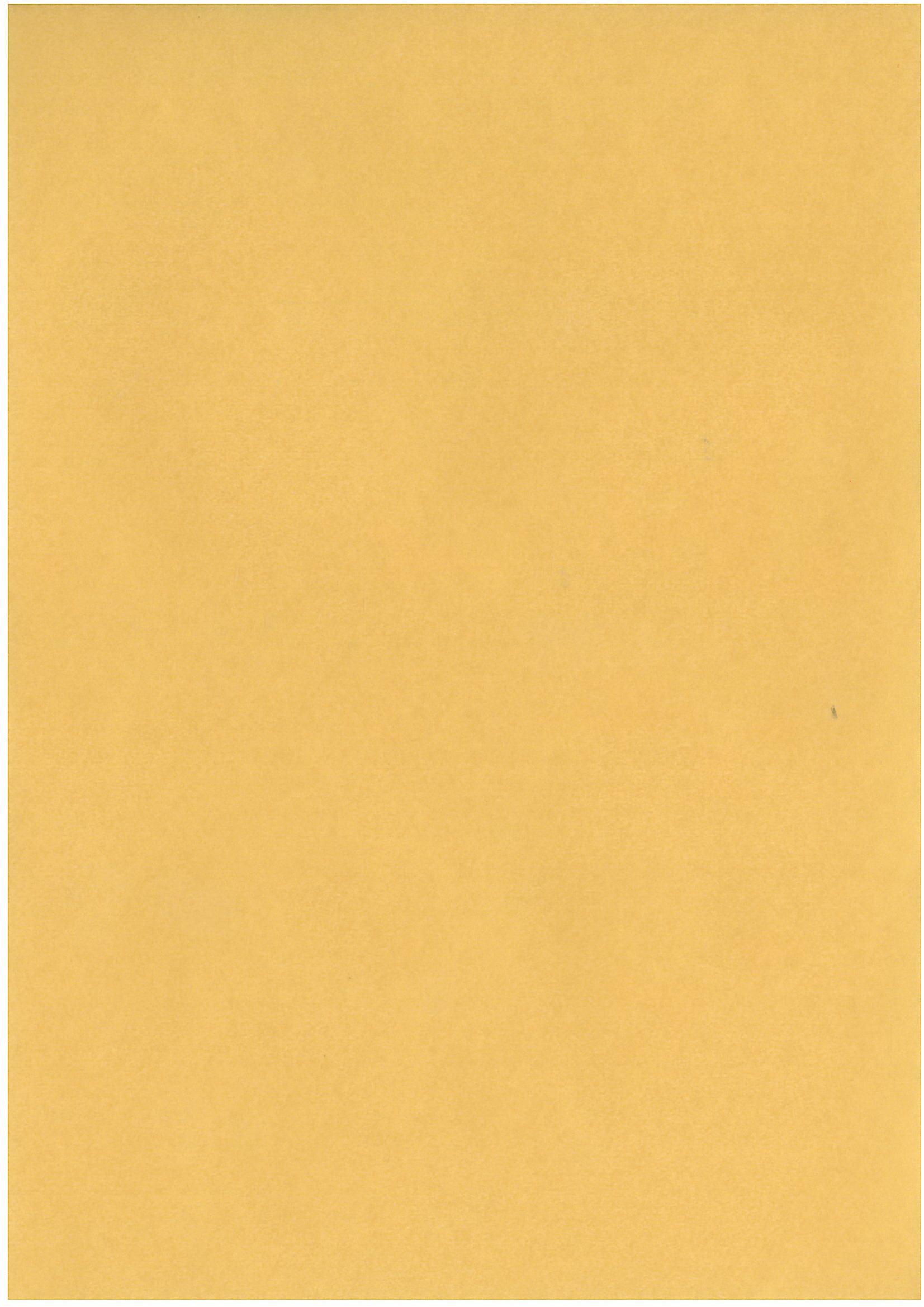 papier calque a4 or clairefontaine 100 gr mille et une feuilles. Black Bedroom Furniture Sets. Home Design Ideas