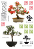 Stickers Bonsai Clairefontaine Home Déco